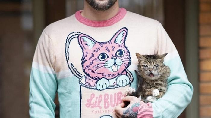Умерла одна из самых известных кошек сети