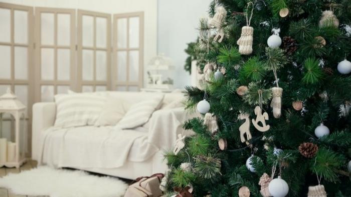 Как выбрать и где купить елку на Новый год
