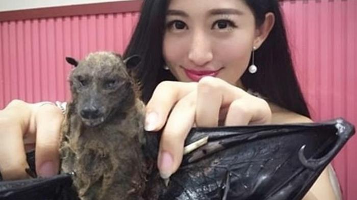 Блогеру угрожают из-за поедания летучей мыши (фото)