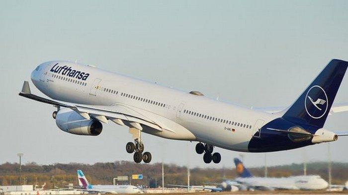 Спальное место в самолете. Lufthansa ввела опцию для пассажиров эконом-класса: фото