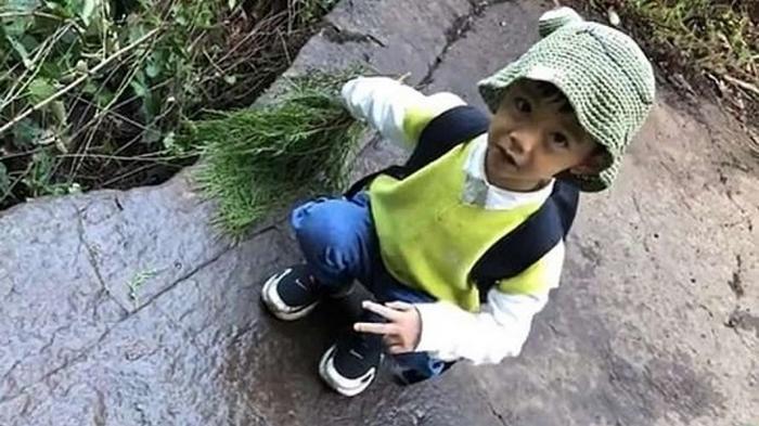 Пятилетний малыш распознал следы редкостного динозавра (фото)