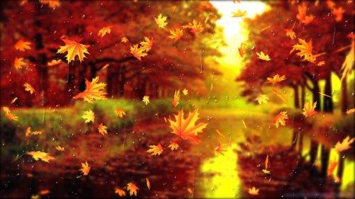 Гороскоп на неделю 15-21 ноября: все знаки зодиака