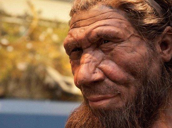 Ученые намерены вырастить мозг неандертальца