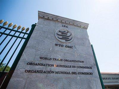 Шесть стран подали иски в ВТО против Украины