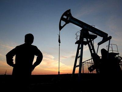 ОПЕК сможет сократить добычу нефти только к концу 2016 года — СМИ