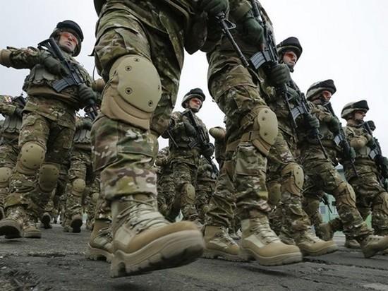 Петр Порошенко назвал сроки введения стандартов НАТО