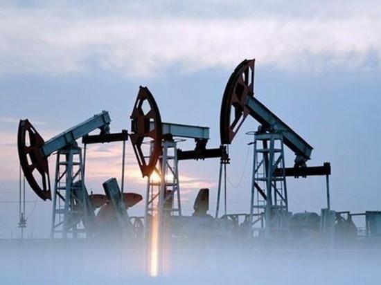 Цены на нефть вернулись к росту после падения