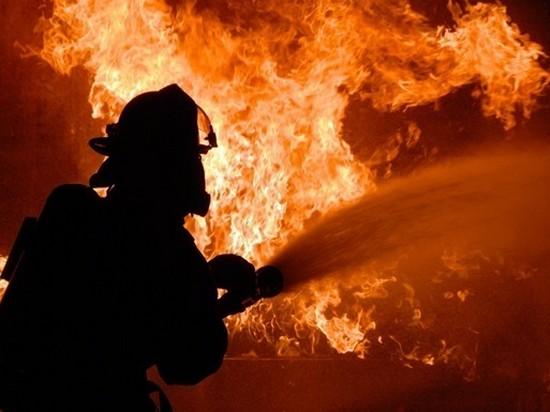 В Украине на пожарах погибли более 300 человек