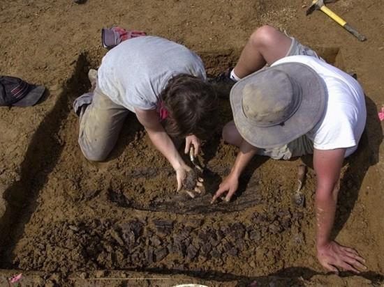 Огромную тропу динозавров нашли в Австралии