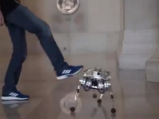 Ученые научили робопса делать сальто (видео)