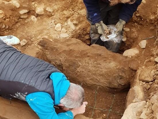 Археологи нашли уникальный нож бронзового века (фото)