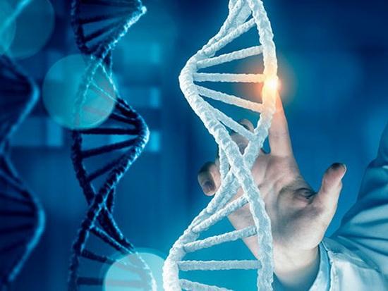 Генеалогический тест ДНК на национальность