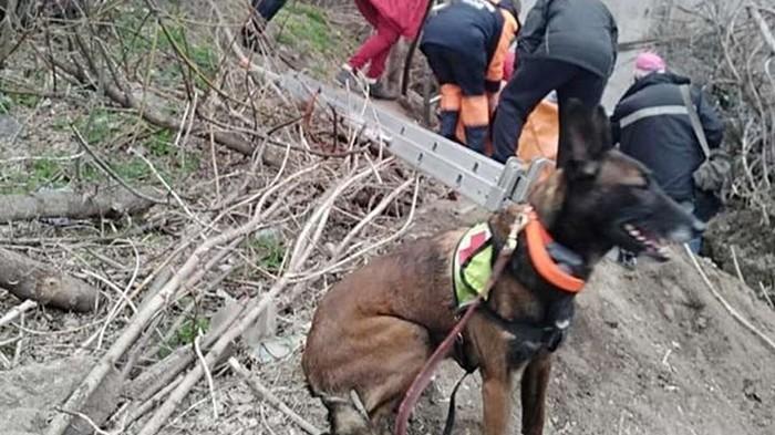 В Днепре собака нашла женщину, которая просидела в колодце двое суток