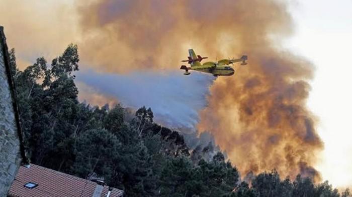 В Испании тушат десятки лесных пожаров (видео)