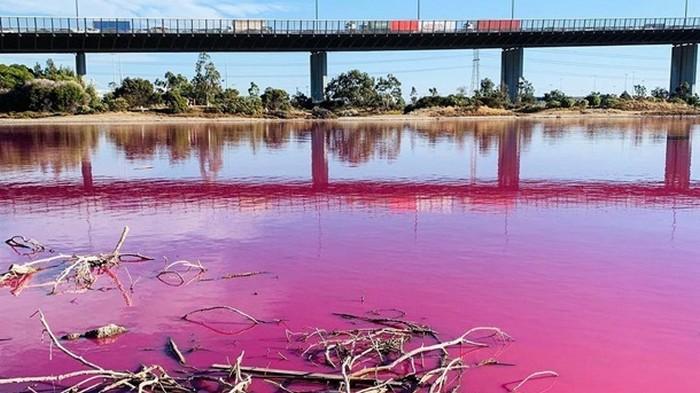В Австралии появилось озеро с розовой водой