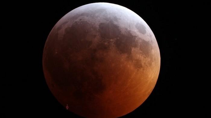 Трамп потребовал отправить американцев на Луну до 2024 года