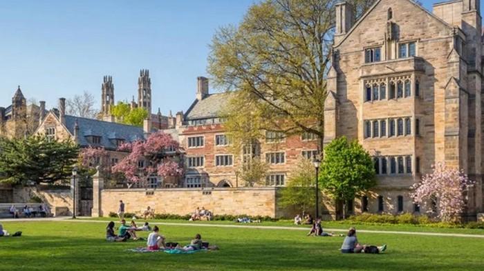 Из Йельского университета студента исключили за взятку в $1,2 миллиона
