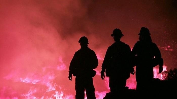 Лесной пожар в Китае: десятки спасателей сгорели заживо
