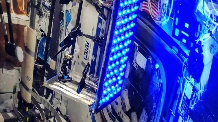 Микробы на МКС могут убивать с помощью ультрафиолета