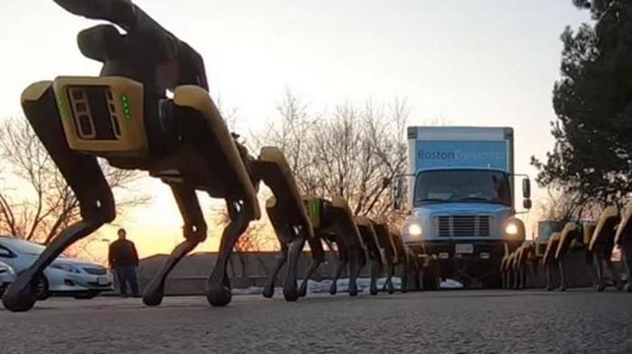 Роботы Boston Dynamics буксировали фуру (видео)