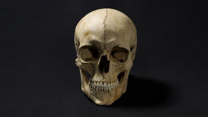Лицо человека, жившего 1300 лет назад, воссоздали на фото