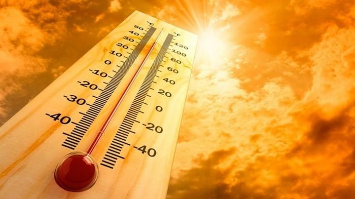 Европа готовится к рекордной жаре