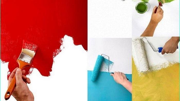 Основные особенности интерьерных красок