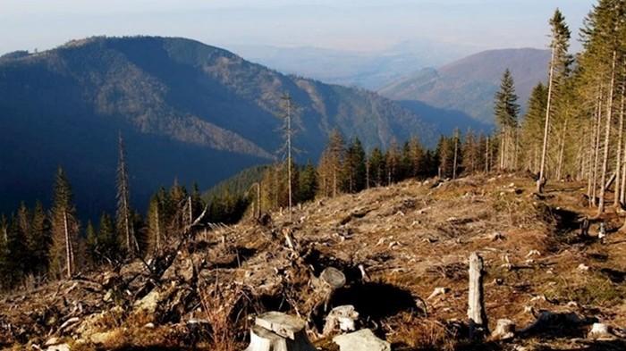 Человечество исчерпало запас ресурсов Земли на 2019 год