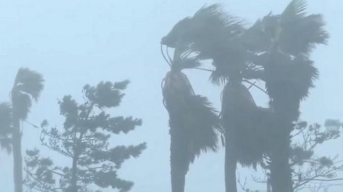 КНДР и Южную Корею накрыл мощный тайфун