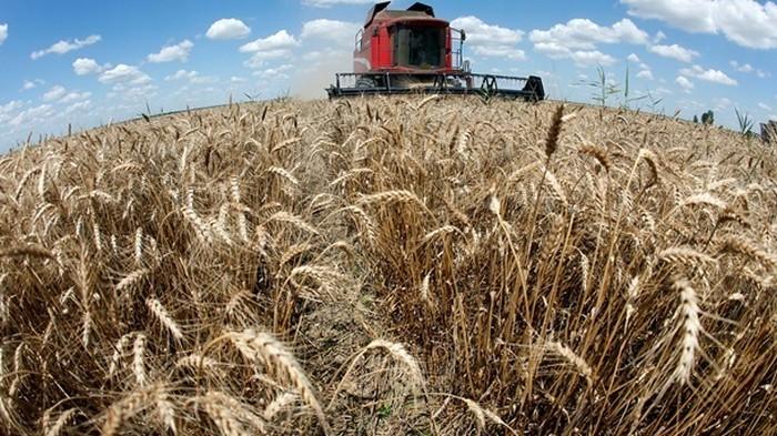 Фермерам обещают дешевые кредиты