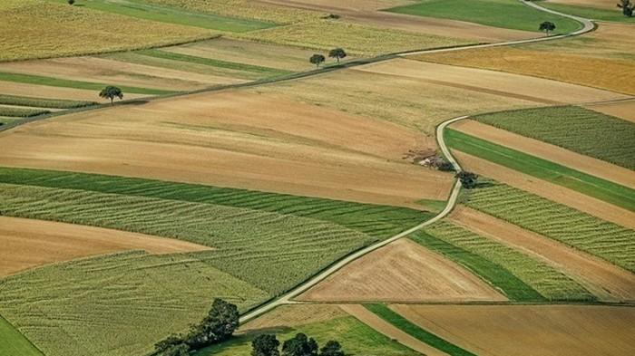 В Украине проведут аэрофотосъемку всей территории