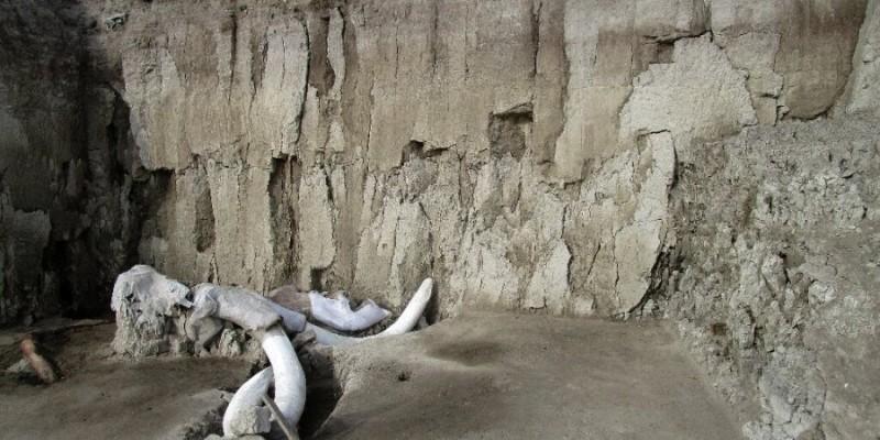 В Мексике обнаружили ловушку на мамонтов