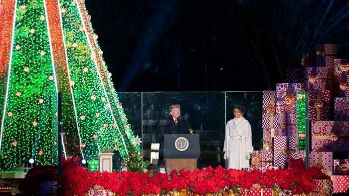 Трамп зажег огни на главной рождественской елке
