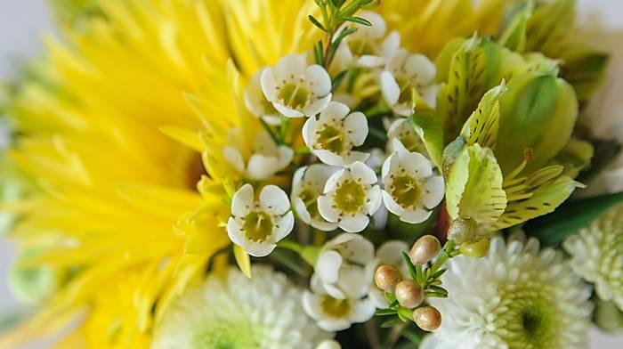 Квіти — найкращий ранковий подарунок