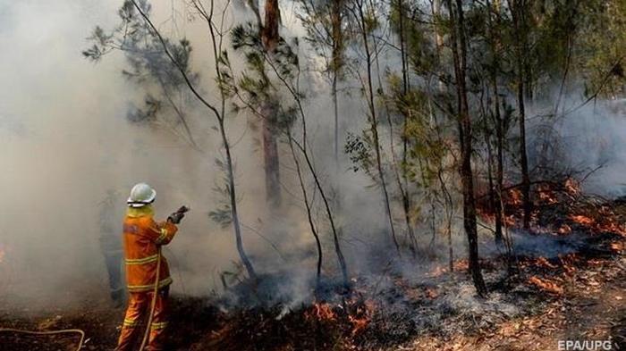 Из-за пожаров в Австралии эвакуировали 30 тысяч туристов