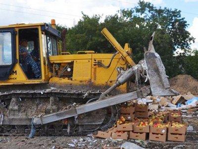 В РФ бульдозером уничтожили около 7 тонн черешни из Украины