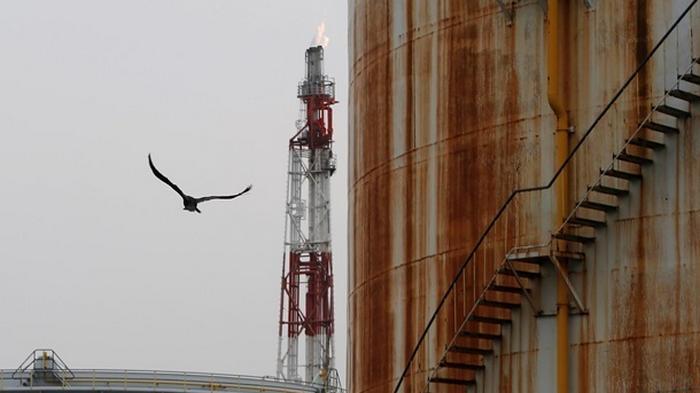 Стоимость российской нефти упала ниже 19 долларов