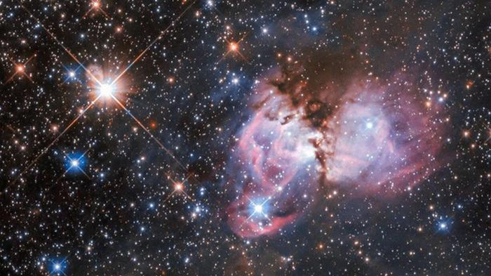 Hubble снял звездную колыбель в туманности Тарантул (фото)