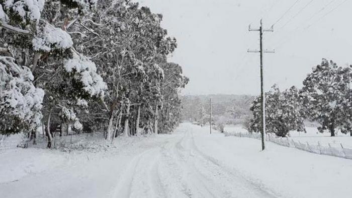 Австралию засыпало снегом (видео)