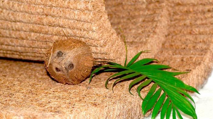 Матрасы из кокосовой койры для здорового сна