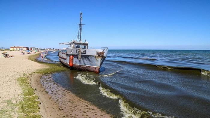 В Затоке на пляж выбросило корабль (видео)
