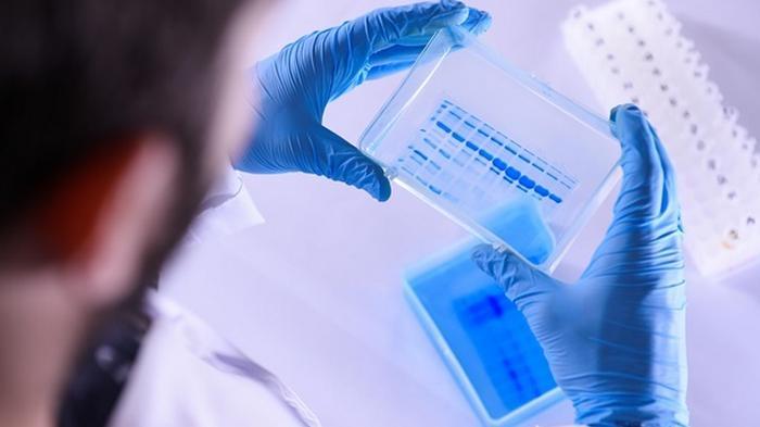 В Британии начали испытания лекарства от COVID