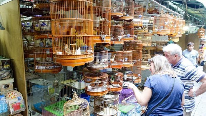 Украинцев хотят заставить платить за котов, собак и попугаев
