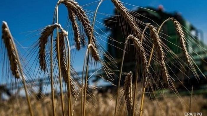 Минэкономики снизило прогноз урожая зерновых