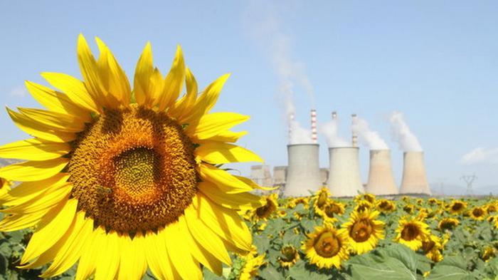 Антимонопольный комитет передал шесть ТЭЦ в управление Нафтогазу