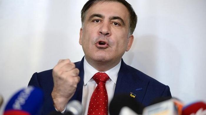 Саакашвили выдвинули на пост премьера Грузии