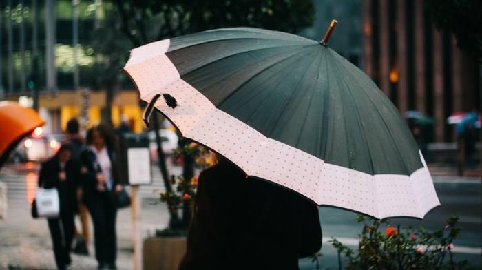 Отличительные особенности женских складных зонтов