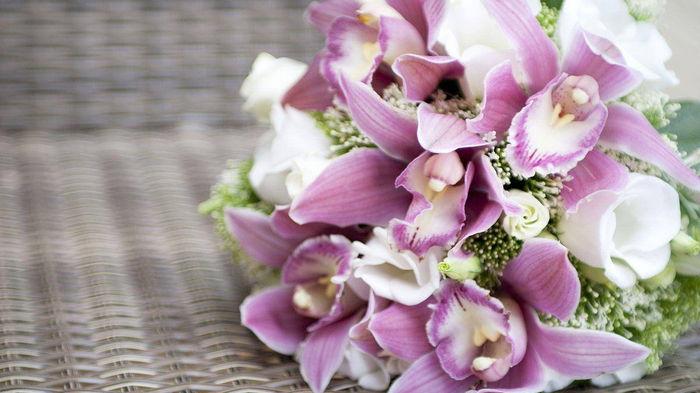 Орхидеи — сделайте запоминающийся подарок