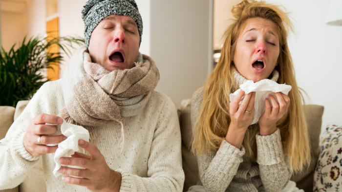 Против коронавируса проверили антитела к допандемичным простудам