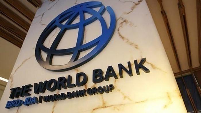 Всемирный банк выделит $12 млрд развивающимся странам